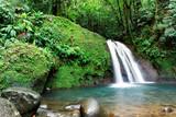 Fototapety Cascade en foret tropicale