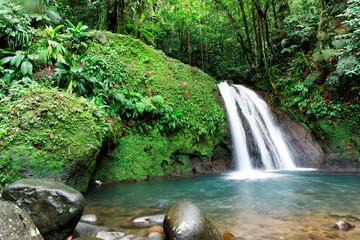 Cascade en foret tropicale