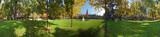 Cremona, il torrazzo dai giardini poster