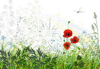 Landscape with wild grass and flowers and flying dragonfly
