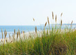 Leinwandbild Motiv Am Meer - At the Beach