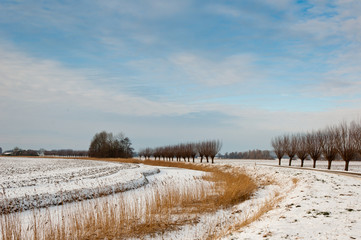 Dutch rural winter landscape