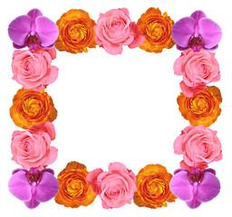 Cornice di fiori multicolori