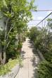 terrazzo nel verde