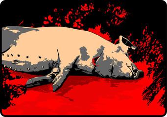 pig slauhtering