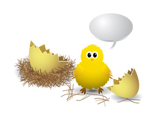 Chicken with egg, nest and text bubble on white background