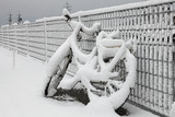 Fototapety bicycle and snow