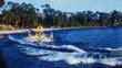 Water Ski Show (Archival 1960s)
