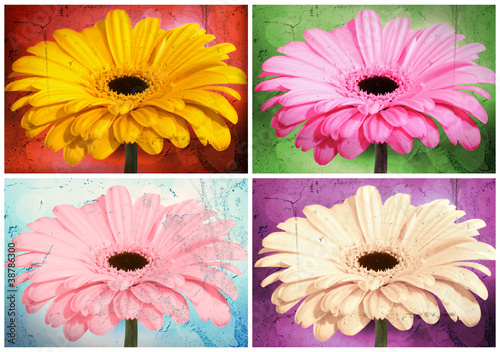 Collage Gerberas - grungelook