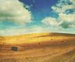retro harvest
