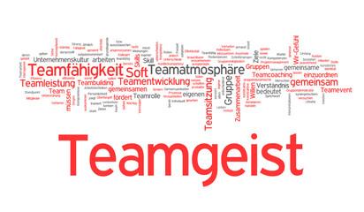 Teamgeist