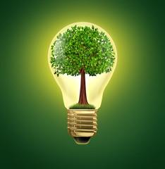 Environmental Ideas