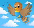 Bird theme image 1
