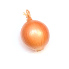 traditional onion