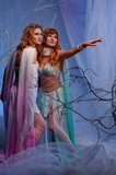 Elves in magical winter forest. poster