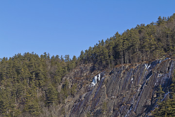 Steep rock face surrounded by forest
