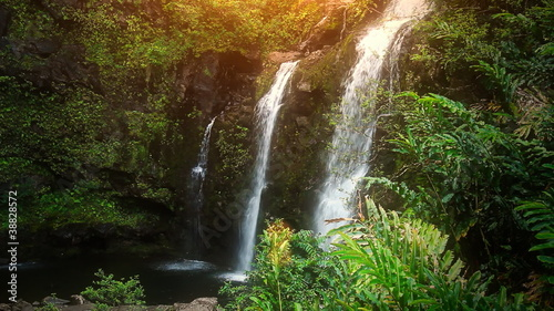 Waterfall in Tropical Paradise (HD Loop)