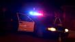 Police Car with Lights Flashing at Roadblock