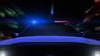 Police Car Driving (Front POV)