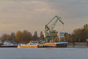 Barge at Rhein river at sunset near Karlsruhe, Germany
