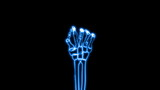 X-Ray of Human Hand Grasping (HD) poster
