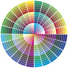 Vector swatch circle