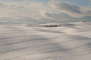 Peacefull snowscape