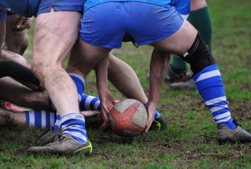 l'ovale du rugby