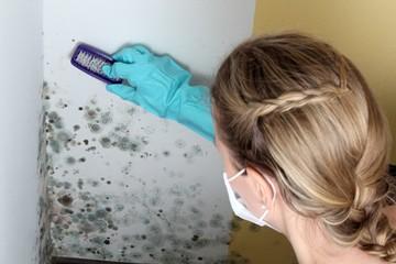 Frau entfernt Schimmel mit Bürste