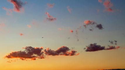 夕焼け雲と飛行機