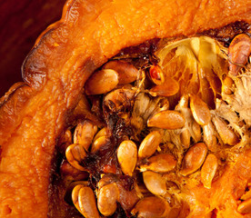 cutted half pumpkin roasted pumpkin