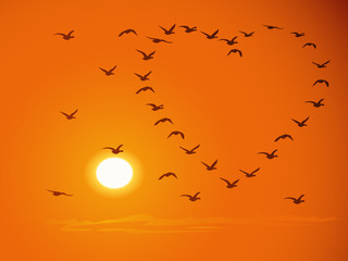 Flying flock birds against sunset.