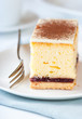 Piece of cheesecake with white chocolate and cocoa