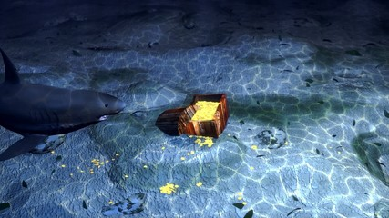 white shark protects a treasury  on the seabed