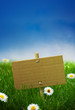 green sign, garden grass, banner, nature, blue sky