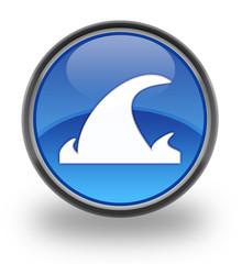 Tsunami Glossy Button