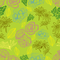 Vector seamless floral pattern with flowers