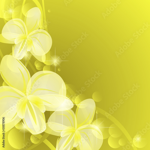 Background with yellow orchids