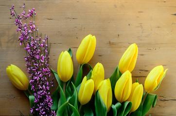 Tulipes et genêt rose
