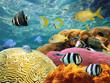 Underwater surface