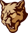 Cougar Mascot Head Vector Illustration