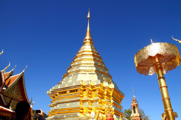 golden at Doi Suthep