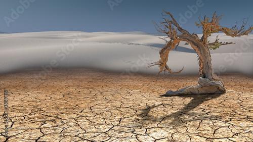 Leinwanddruck Bild Dead Tree in Desert