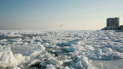 Icy Black Sea Seashore