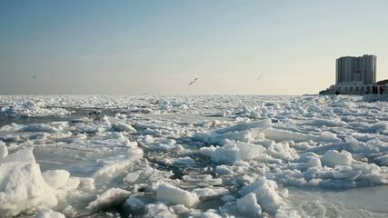 Icy Black Sea Seashore