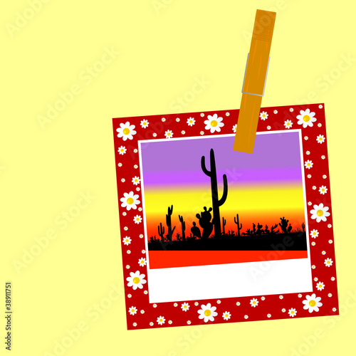 illustration of cactus in the picture with a clip