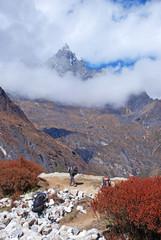 Porters in Khumbu region, Himalayas, Nepal