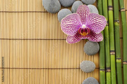 rozowa-orchidea-i-kamienie-z-cienkimi-bambusowymi-pedami
