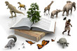 The book and the animals