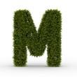Buchstabe M Natur